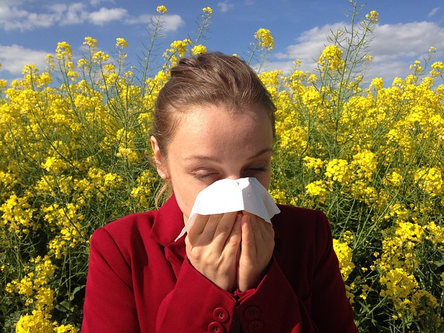 One, Two, Ah-choo!  What to know about seasonal allergies