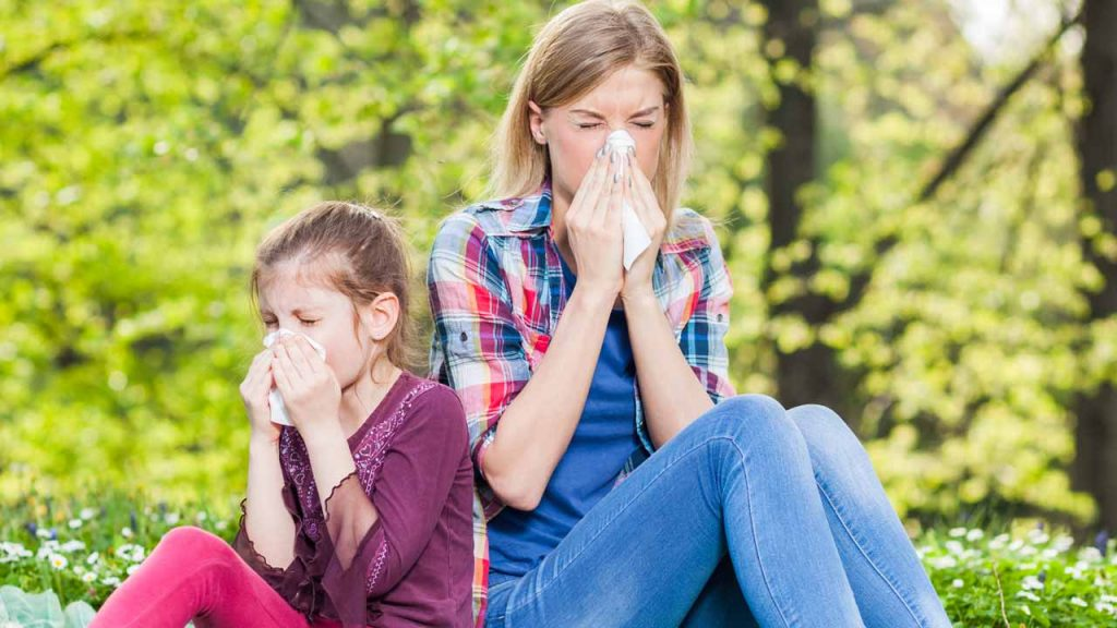 About Amherst Allergy Care