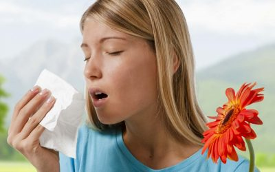Top 3 Myths About Seasonal Allergies Symptoms