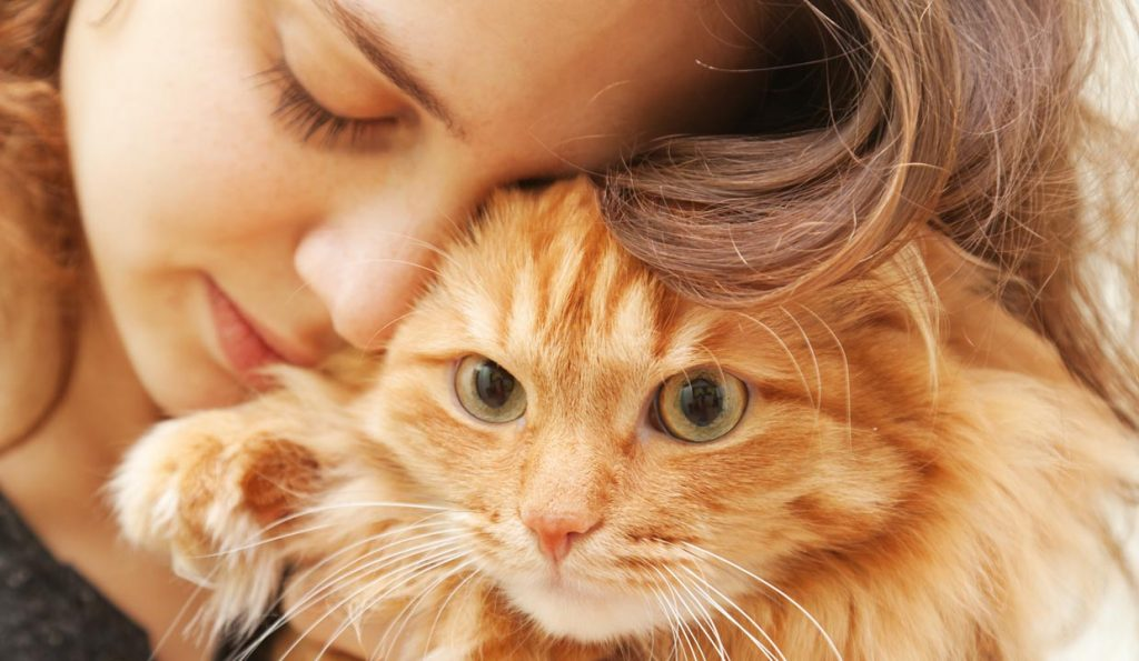 Can I Keep My Pet If I Have Cat Allergies